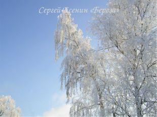 Сергей Есенин «Береза»