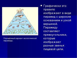 Графически это правило изображают в виде пирамид с широким основанием и узкой