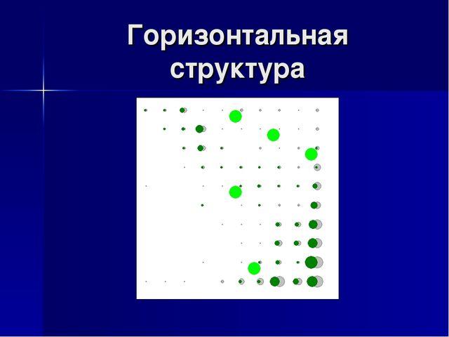 Горизонтальная структура