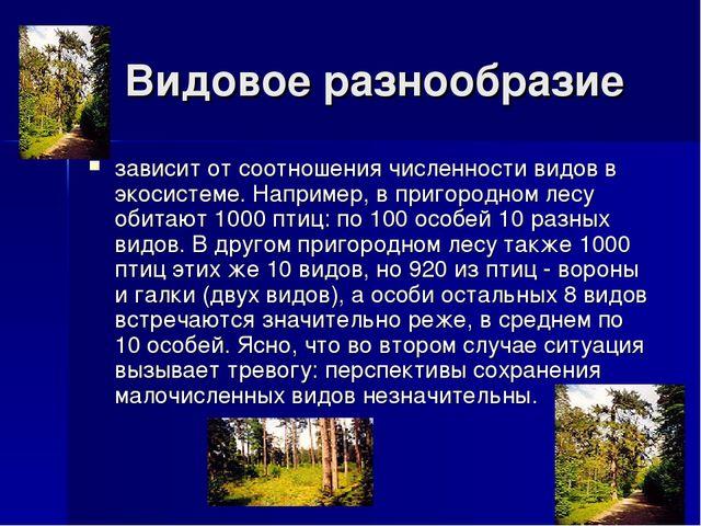 Видовое разнообразие зависит от соотношения численности видов в экосистеме....