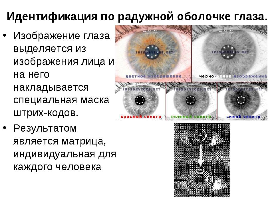 Идентификация по радужной оболочке глаза. Изображение глаза выделяется из изо...