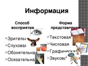 Зрительная Слуховая Обонятельная Осязательная Текстовая Числовая Графическая