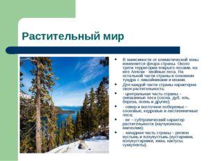 Растительный мир В зависимости от климатической зоны изменяется флора страны.