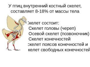 У птиц внутренний костный скелет, составляет 8-18% от массы тела Скелет состо