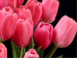 № 13 В Персии этот цветок называли «турецкой чалмой». От названия этого цветк