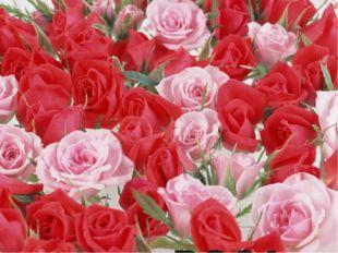 № 9 Однажды к Аллаху явились цветы с просьбой назначить им нового правителя,