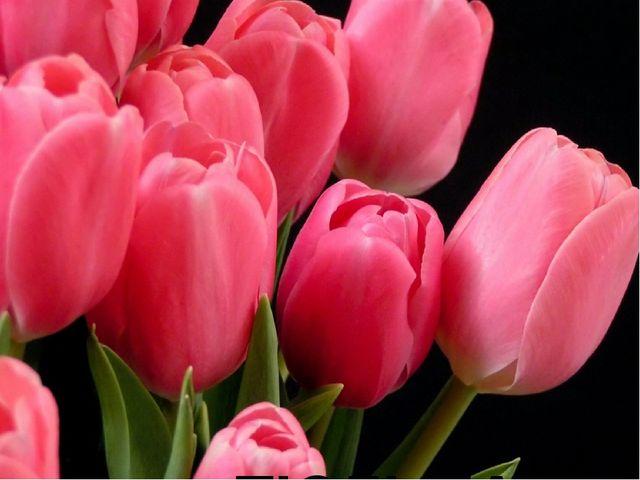 № 13 В Персии этот цветок называли «турецкой чалмой». От названия этого цветк...