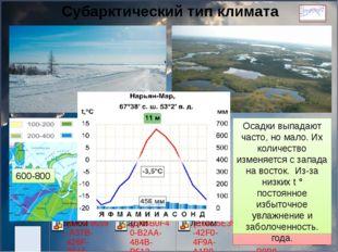 Субарктический тип климата Субарктический пояс расположен к югу от арктическо