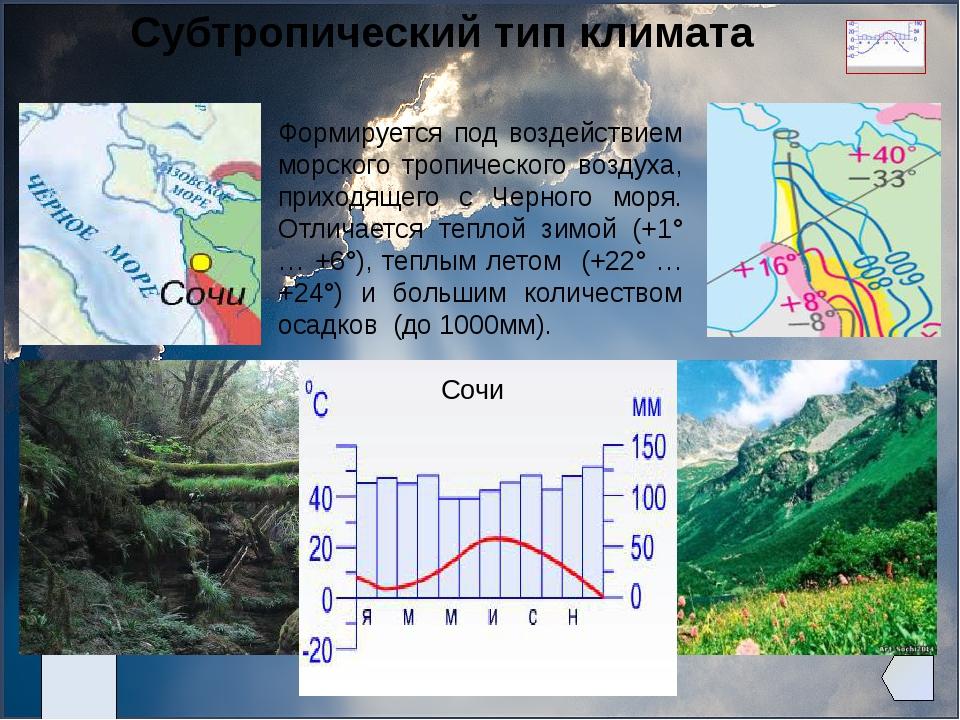 Субтропический тип климата Формируется под воздействием морского тропическог...