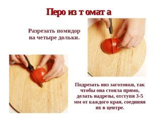 Перо из томата  Разрезать помидор на четыре дольки.  Подрезать низ загото