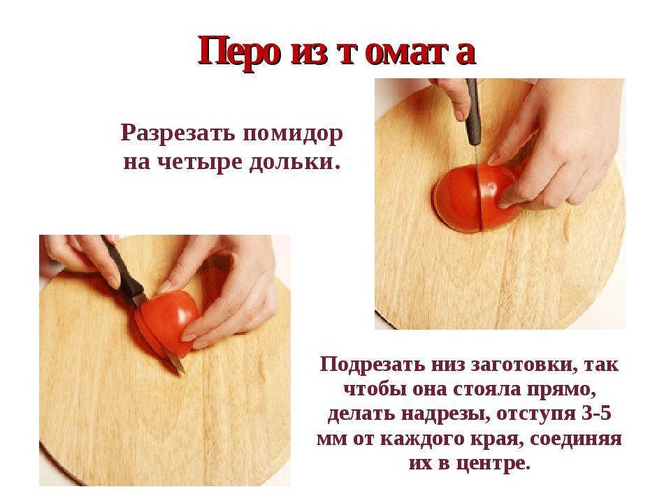 Перо из томата  Разрезать помидор на четыре дольки.  Подрезать низ загото...