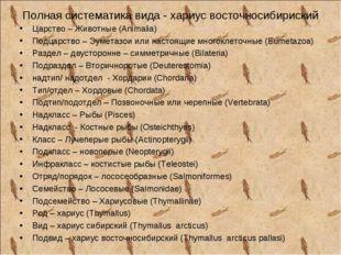 Полная систематика вида - хариус восточносибириский Царство – Животные (Anima
