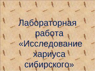 Лабораторная работа «Исследование хариуса сибирского»