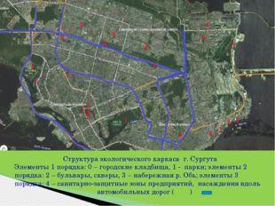 Структура экологического каркаса г. Сургута Структура экологического каркаса