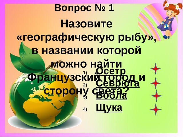 Вопрос № 2 Как древние люди изображали Землю? Плоский диск Шар Черепаха Слон
