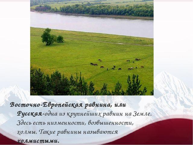 Восточно-Европейская равнина, или Русская-одна из крупнейших равнин на Земле...