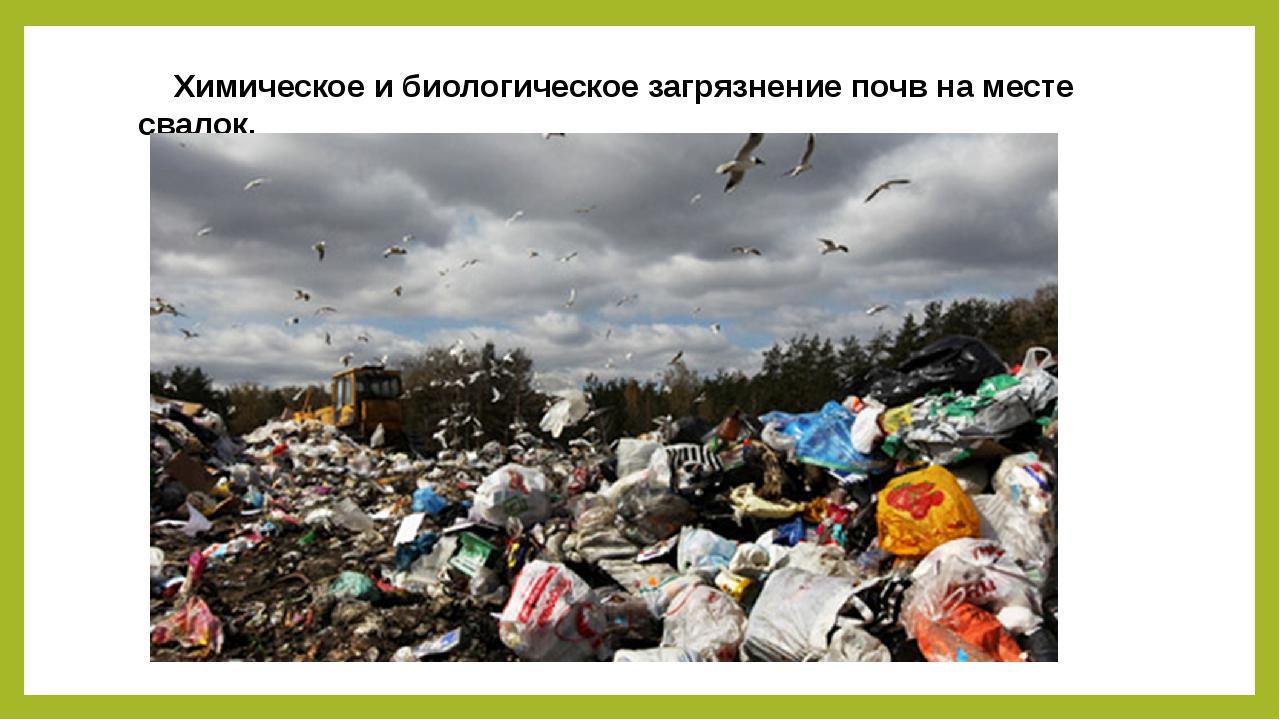 Химическое и биологическое загрязнение почв на месте свалок.