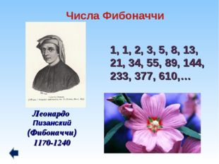 1, 1, 2, 3, 5, 8, 13, 21, 34, 55, 89, 144, 233, 377, 610,… Леонардо Пизанский