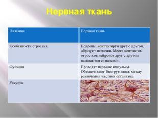 Нервная ткань Название Нервнаяткань Особенности строения Нейроны,контактируя