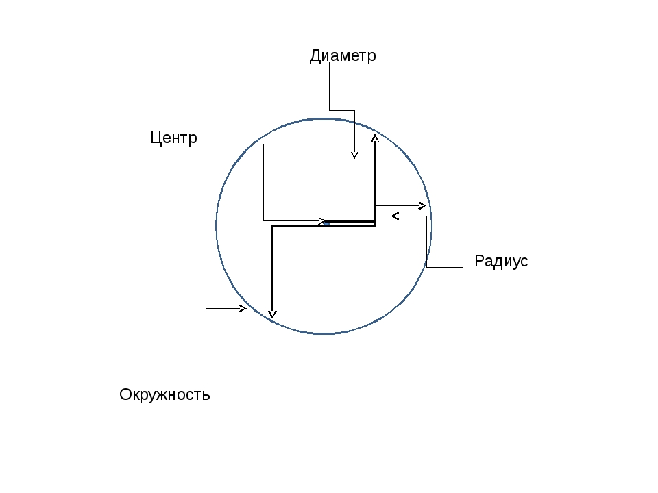 Окружность Диаметр Радиус Центр