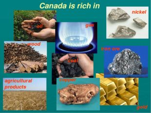 gas oil coal iron ore nickel copper Canada is rich in agricultural products g