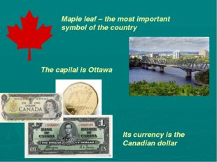 Maple leaf – the most important symbol of the country The capilal is Ottawa I