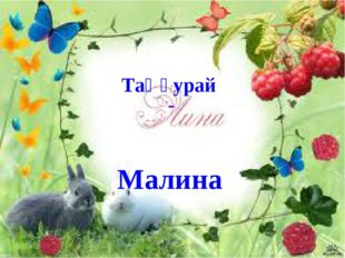 Таңқурай - Малина