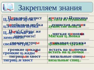 Закрепляем знания Ц..рковой артистЦ..тата из Пушкина ц..гейковая шубкадуши