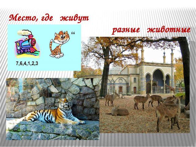 Место, где живут разные животные . . .