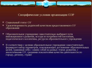 Специфические условия организации ОЭР Социальный статус ОУ Удовлетворенность
