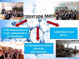 1.Мотивационный старт (введение в погружение). 2.Погружение (блок занятий, м