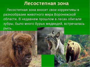 Лесостепная зона Лесостепная зона вносит свои коррективы в разнообразие живо