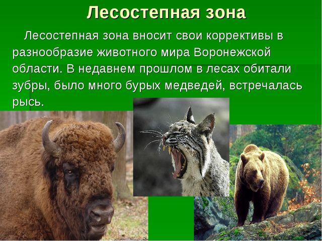 Лесостепная зона Лесостепная зона вносит свои коррективы в разнообразие живо...