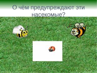 О чём предупреждают эти насекомые?