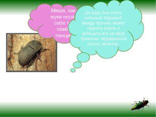 Миша, как же жуки носят на себе такой тяжёлый панцирь? Да ведь они очень сил