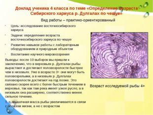 Доклад ученика 4 класса по теме «Определение возраста Сибирского хариуса р. Д