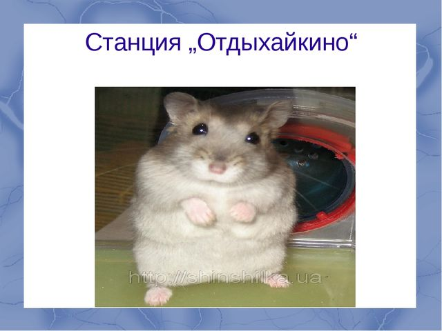 "Станция ""Отдыхайкино"""
