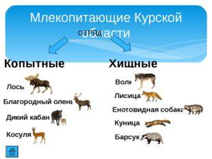 Благородный олень Олень всегда был желанным объектом охоты, дающим человеку м