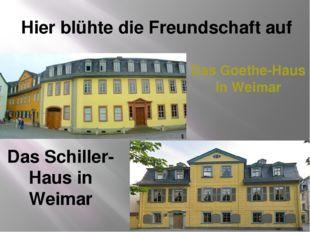 Das Goethe-Haus in Weimar Das Schiller-Haus in Weimar Hier blühte die Freunds