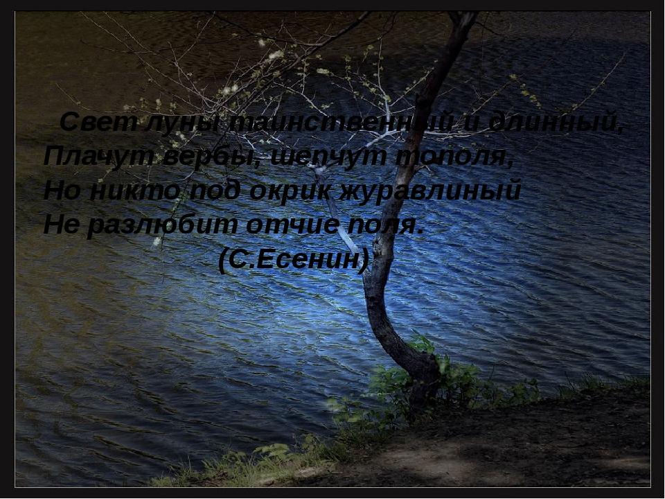 Свет луны таинственный и длинный, Плачут вербы, шепчут тополя, Но никто под...