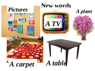 New words Pictures А carpet A TV A table A plant