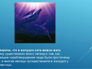 Люди верили, что в желудке кита можно жить В старину существовало много леген