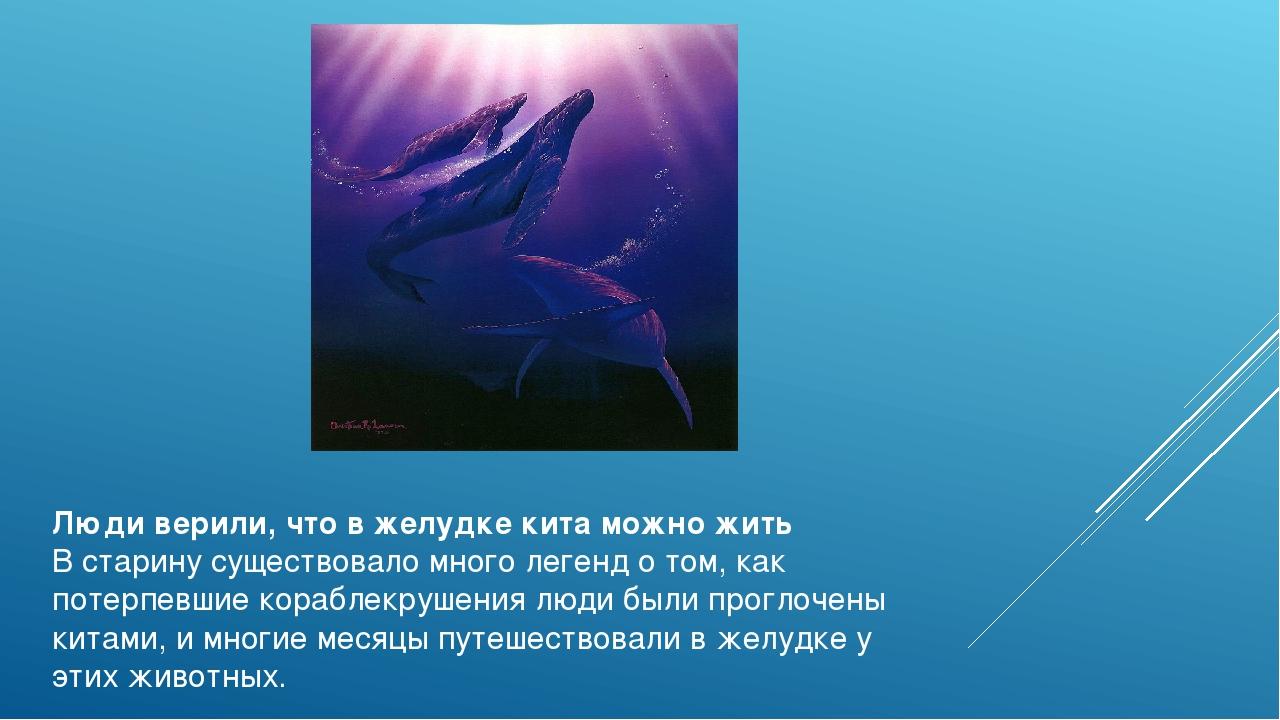 Люди верили, что в желудке кита можно жить В старину существовало много леген...