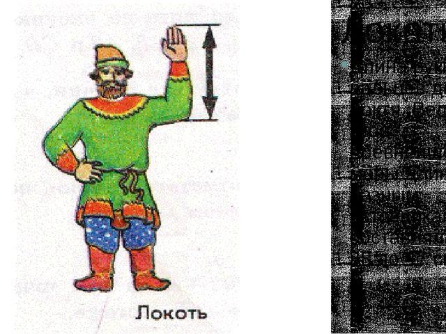 Локоть Длина руки от пальцев до локтя. Величина этой древнейшей меры длины, п...