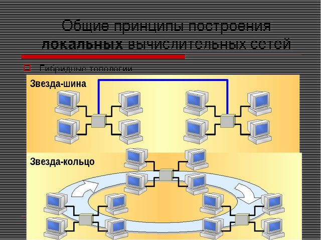 Общие принципы построения локальных вычислительных сетей Гибридные топологии