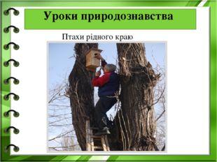 . Уроки природознавства Птахи рідного краю