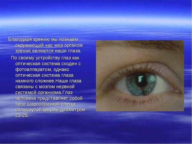 Благодаря зрению мы познаём окружающий нас мир органом зрения являются наши г...