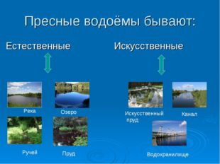 Пресные водоёмы бывают: Естественные Искусственные Река Озеро Ручей Пруд Иску