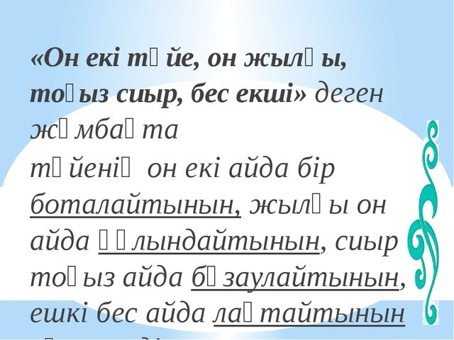 «Он екі түйе, он жылқы, тоғыз сиыр, бес екші» деген жұмбақта түйенің он екі а...