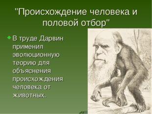 """""""Происхождение человека и половой отбор"""" В труде Дарвин применил эволюционную"""